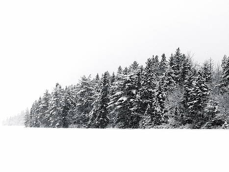 Winter Wonderland by Colton Macaulay