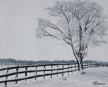 Winter Wonderland by Melissa Torres