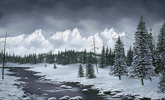 Winter Wonderland by Rick Bainbridge
