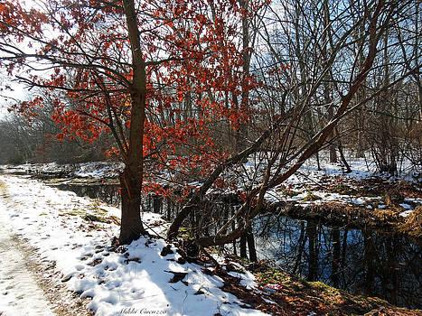 Winter Woods by Mikki Cucuzzo