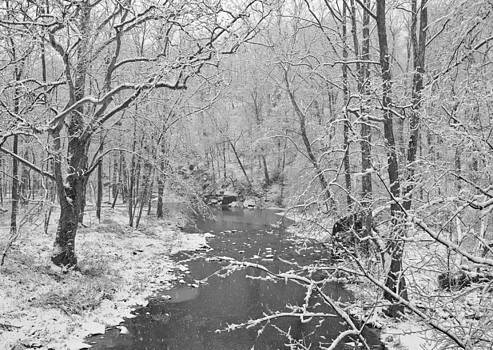 Winterlake by Nancy Edwards
