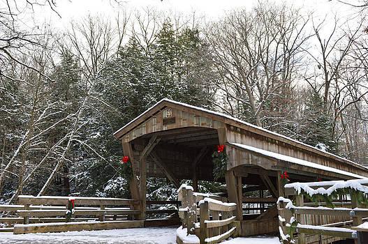 Winter's Beauty by Jim Wilcox
