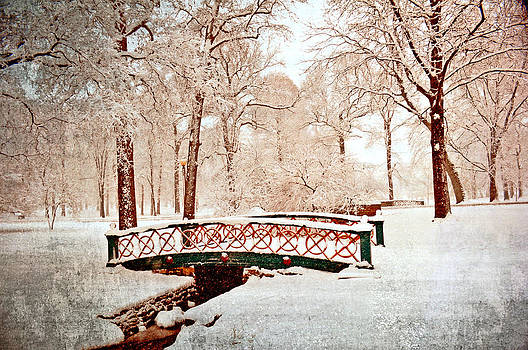 Marty Koch - Winter