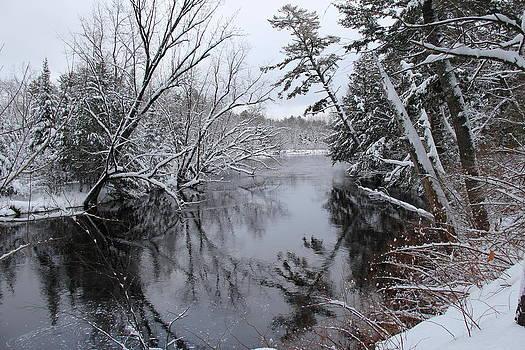 Winter's Dance by Sue  Thomson