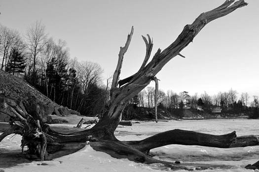 Winters Drift Black and White by Wendell Ducharme Jr