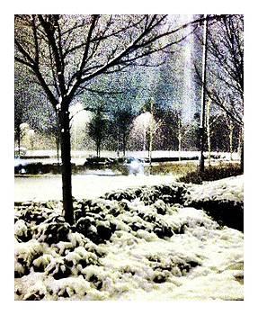 Winters light by Andrew Allsopp