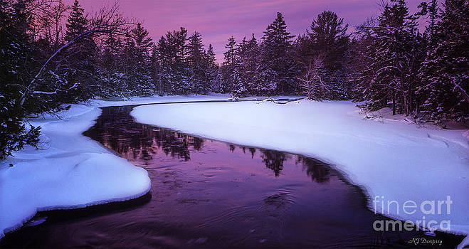 Winter's Luminence by Nancy Dempsey