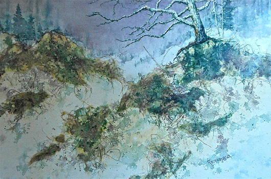 Winter's Morn by Carolyn Rosenberger