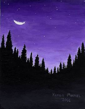 Winters Night by Karen E Marvel