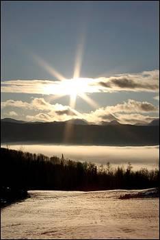 Winter's Sun by Danielle Silveira