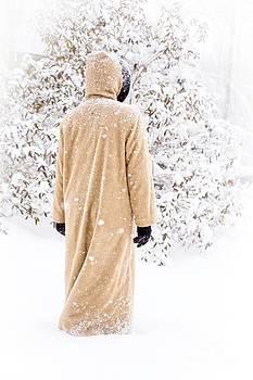 Edward Fielding - Winter