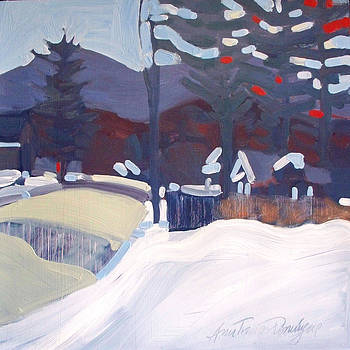 Winter's View South by Ann Trainor Domingue