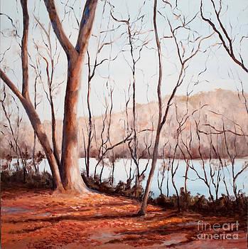 Wintry River Morning by Glenda Cason