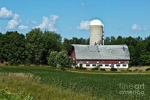 Wisconsin Old Barn 12 by Ms Judi