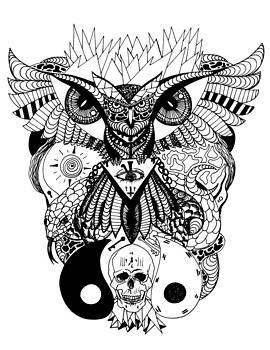 Wise Owl and The Ageless Skull by Kenal Louis