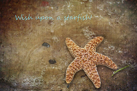 Regina  Williams  - Wish Upon a Starfish