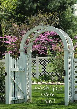 Rosanne Jordan - Wish You Were Here