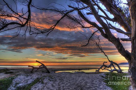 Wishing Branch Sunset by Matthew Hesser