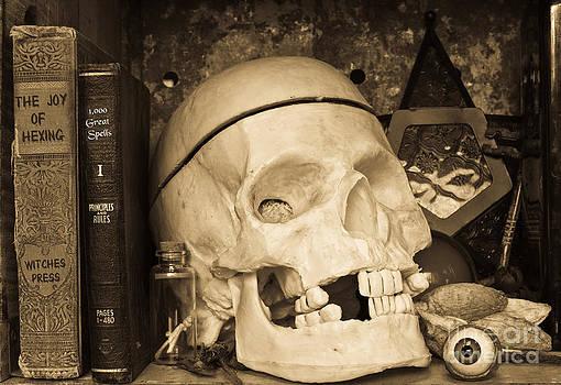 Edward Fielding - Witches Bookshelf