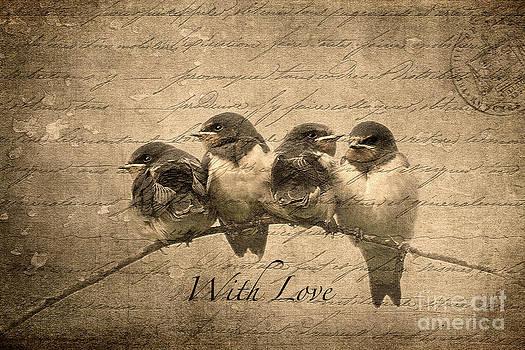 Liz  Alderdice - With Love