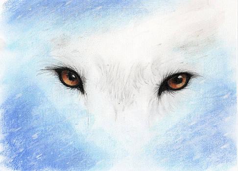 Janelle Schneider - Wolf Eyes