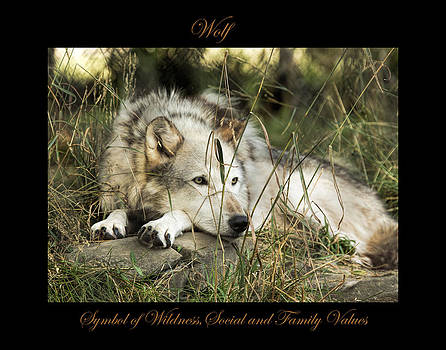 Wolf Symbol of by Marty Maynard