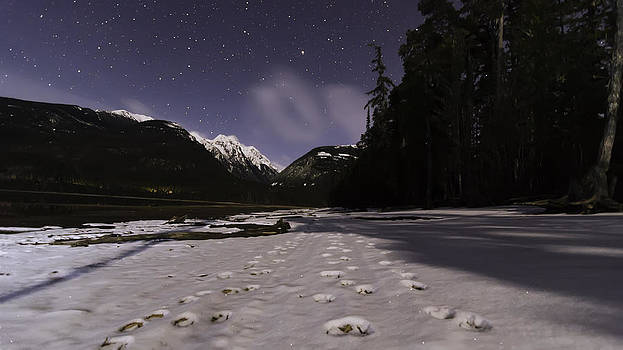 Wolf Tracks and Moon Shadows by Lisa Hufnagel