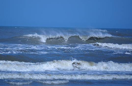 Wonders of Waves by Jeff Moose