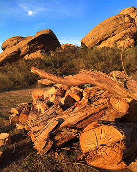 Wood and Stone by Barry Shereshevsky