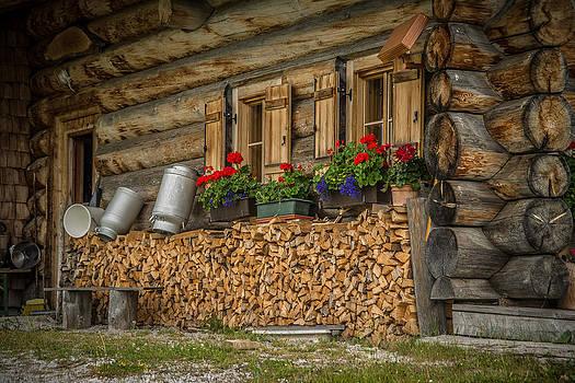 Wooden Cabin by Enrico Ackermann