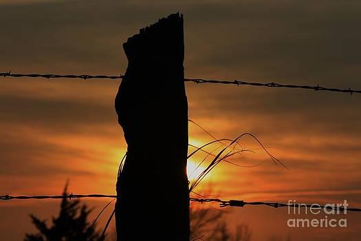 Wooden fence Post Sunset by Robert D  Brozek