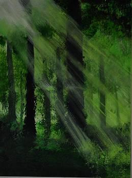 Wooden Landscape 1 by P Dwain Morris