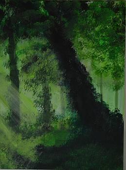 Wooden Landscape 2 by P Dwain Morris