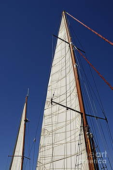 Wooden masts and sails by Sami Sarkis