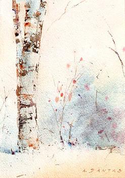 Woodland Nooks #5 by Alex Dantas
