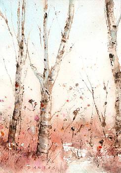 Woodland Nooks #7 by Alex Dantas