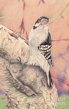 Woodpecker by Lisa Prusinski