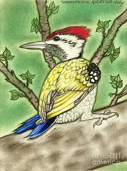 Woodpecker by Taryn  Libby