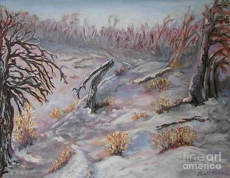 Woods in Mid-Winter by Laurel Anderson-McCallum