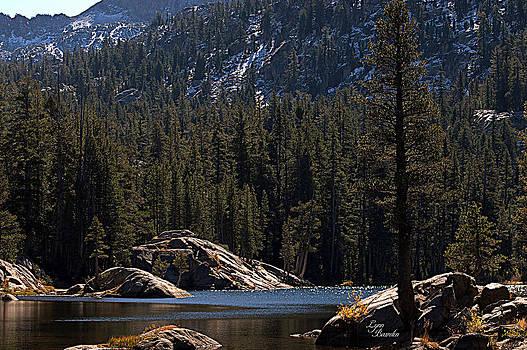 Lynn Bawden - Woods Lake