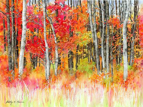 Hailey E Herrera - Woodsy Forest
