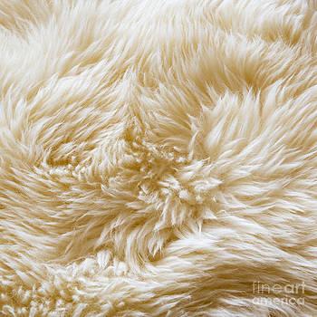Tim Hester - Wool