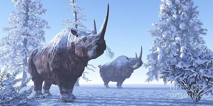Corey Ford - Woolly Rhino