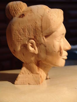 Work in progress Just a Pretty Face by G Peter Richards