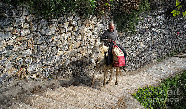 Worker riding mule by Mount Athos