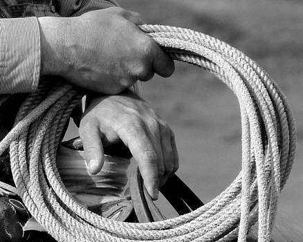 Working Man's Hands by Carla Froshaug