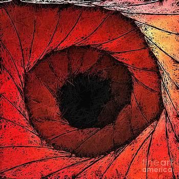 Wormhole by Shane B