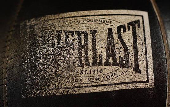 Worn Everlast Speed Bag by Colleen Renshaw