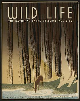 WPA National Park Service Wildlife by David Seguin