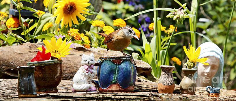 Wren Bird and Tea Photo by Luana K Perez